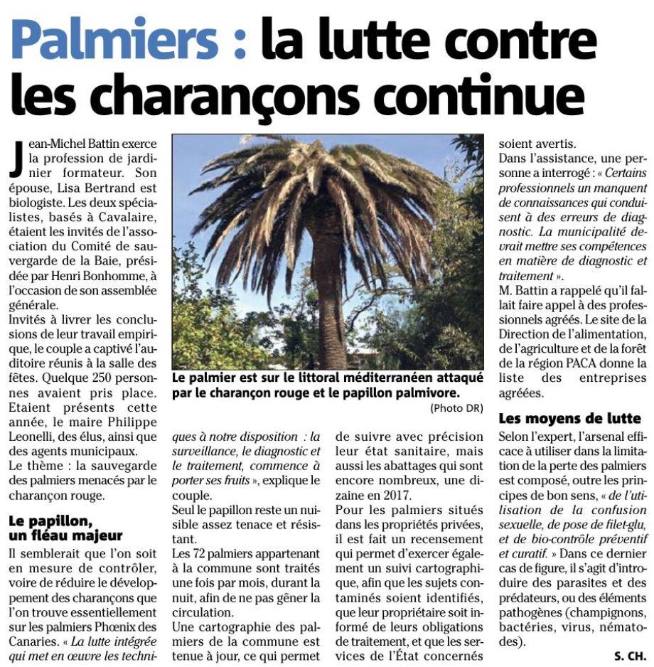Var matin 12-08-2017 Palmier-Lutte contre les charançons